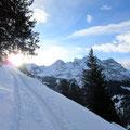 Morgenstimmung mit alpiner Kulisse - oberhalb Brändlen