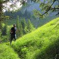 Viel grün in der Abstiegsflanke