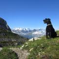 Weitblick zu den Berner Alpen