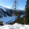 Das Obergoms hat eine beträchtliche Altschneedecke