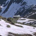 Tagesziel erreicht: Leutschachhütte