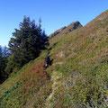 Gratwegs zum Schafmattgipfel