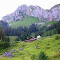 Alp Fomatt