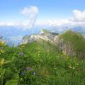 Ausblick vom Nägeler bis ins Glarnerland ++