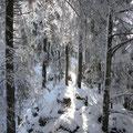 Winterlicher Aufstieg an einem Frühlingstag