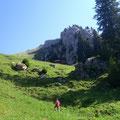 Der Einstieg befindet unmittelbar östlich der Alp Tumli