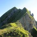 Bei der Ällgäulücke betreten wir die steilen Grasgrate