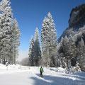 Winterstimmung im Choltal