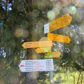 Abstieg via Zyberliweg nach Romoos