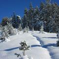 Für tolle Schneeimpressionen war die Route vom Stäldeli gegen Rickhubel eine gute Wahl.