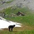 Bockihütte - unbedingt besuchen