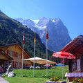 Das Wetterhorn von der Schwarzwaldalp