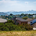 Coastal Cliff Walk - Dudley Page Reserve / Dover Heights