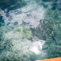 Mit dem Kanu nach Haslewood Island - Korallenriff direkt vor der Insel