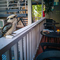 Glenferrie Lodge, Sydney - der Kookaburra
