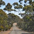 Unterwegs auf Kangaroo Island