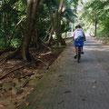 Unterwegs auf La Digue (Inselinneres)nterwegs auf La Digue (Inselinneres)