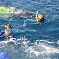 Ningaloo Reef - Schnorcheln