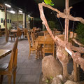 Restaurant beim Camping (Hync-Haven Rainforest Retreat)