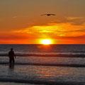 Eighty Mile Beach - Sunset