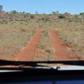 Weg vom Syndy Way Camp zum Lasseter Highway