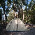 Der Nationalpark-Campingplatz am Whitehaven Beach - unser Platz!