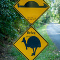 Daintree National Park - Roadsign
