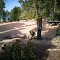 Der Nationalpark-Campingplatz am Whitehaven Beach
