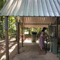 Lync-Haven Rainforest Retreat - das Camp-Kitchen
