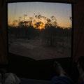 Übernachtung bei Heidi im Garten - Sonnenaufgang vom Dachzelt aus