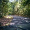 Strasse durch den Daintree NP Richtung Süden nach Port Douglas