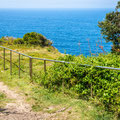 Coastal Cliff Walk - Eastern Avenue Reserve / Dover Heights