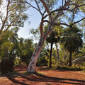 Millstream-Chichester National Park - Camping Crossing Pool