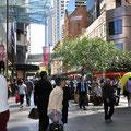 Downtown - Pitt Street