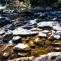 Eungella NPational Park - Fluss direkt beim Campground