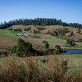 Auf dem Weg zum Eungella National Park - kurz vor dem Fern Flat Campground