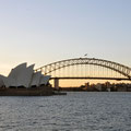 Opara und Harbour Bridge vom Botanischen Garten aus