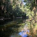 Eungella National Park - Wasserstelle direkt beim Fern Flat Campground