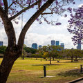 New Fam Park