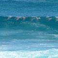 Cape Bauer Coastal Drive - Surfende Delfine!!!!