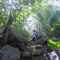 Auf dem Weg zur Petit Anse und Anse Coco