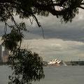 Breadleys Head (Sydney Harbour NP)