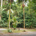 Lync-Haven Rainforest Retreat - Campingparzellen