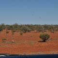 Auf dem Stuart Highway Richtung Süden