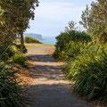 Coastal Cliff Walk - Clarke Reserve