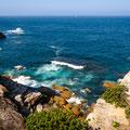 Coastal Cliff Walk - Diamond Bay Reserve