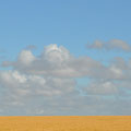 Landschaft Richtung Streaky Bay