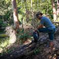 Eungella NPational Park - Fluss direkt beim Campground - warten auf den Platypus