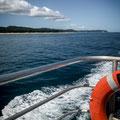 Unterwegs zu den Walen - Moreton Island im Hintergrund
