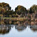 Kangaroo Island Caravan Park - Lagune beim Platz
